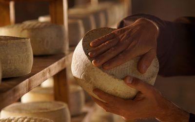 Todo lo que debes saber sobre el afinado del queso