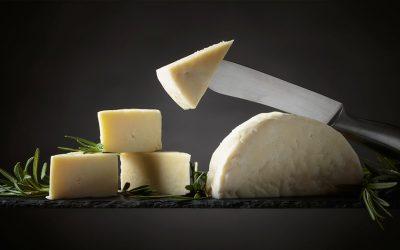 Descubre los beneficios del queso de oveja