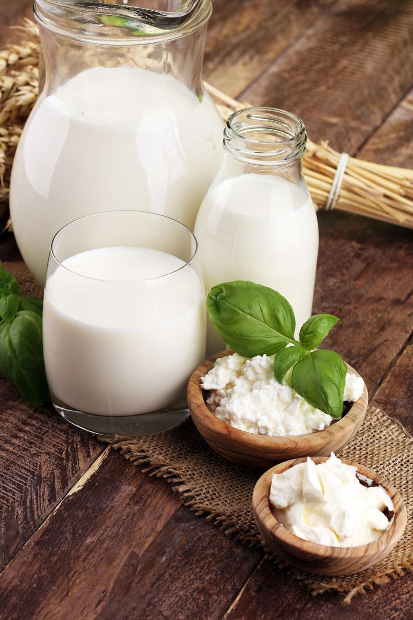 Beneficios del queso de oveja: rico en proteínas y minerales con los que ayuda al cuidado de los tejidos musculares