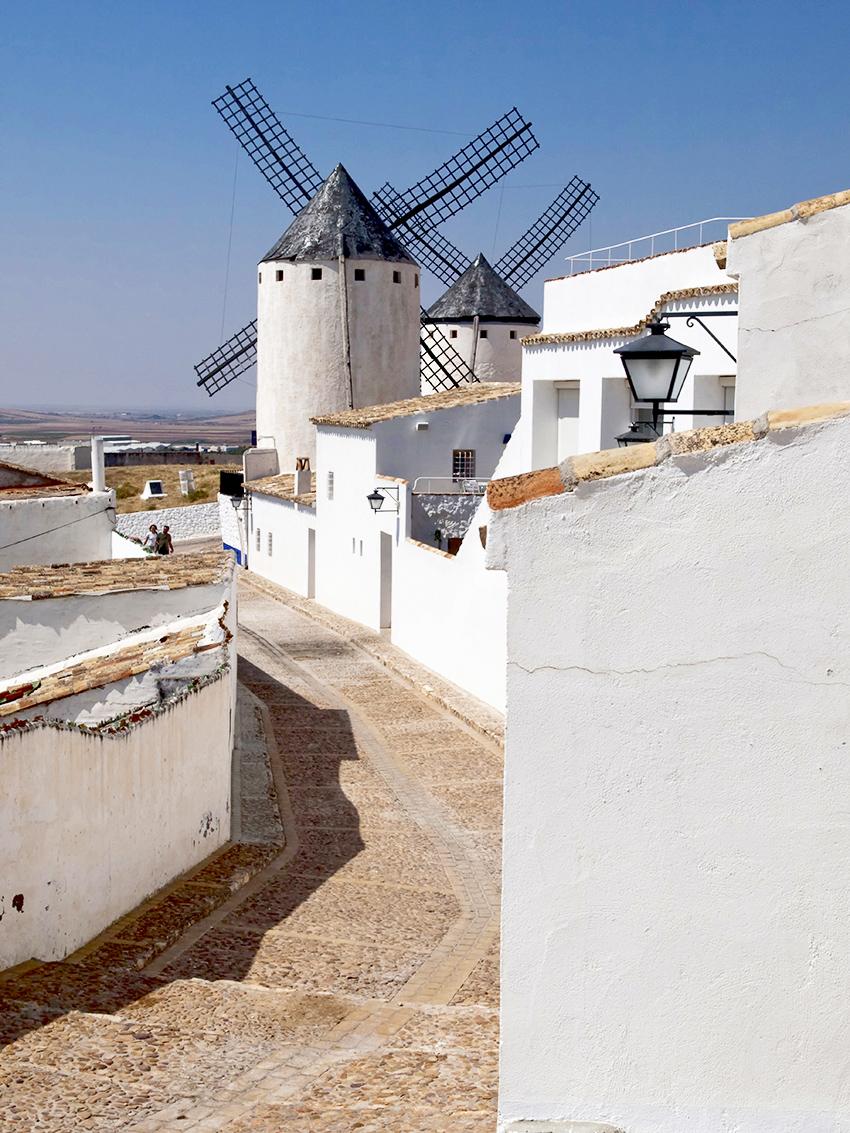 De Ruta quesera por La Mancha con García Baquero. Primera parada: Campo de Criptana con queso manchego de Ciudad Real