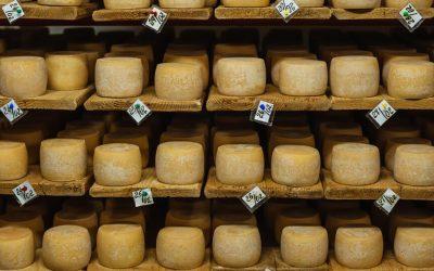 El queso: el secreto para prolongar la vida y acelerar el metabolismo